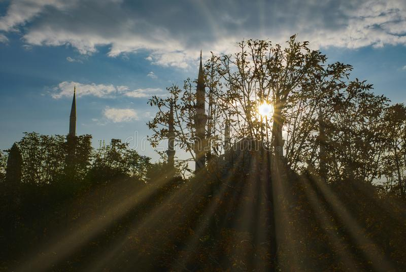 Los rayos solares pegan a través de ramas de árboles con la mezquita de Sultanahmet en el fondo en Estambul, Turquía fotos de archivo libres de regalías