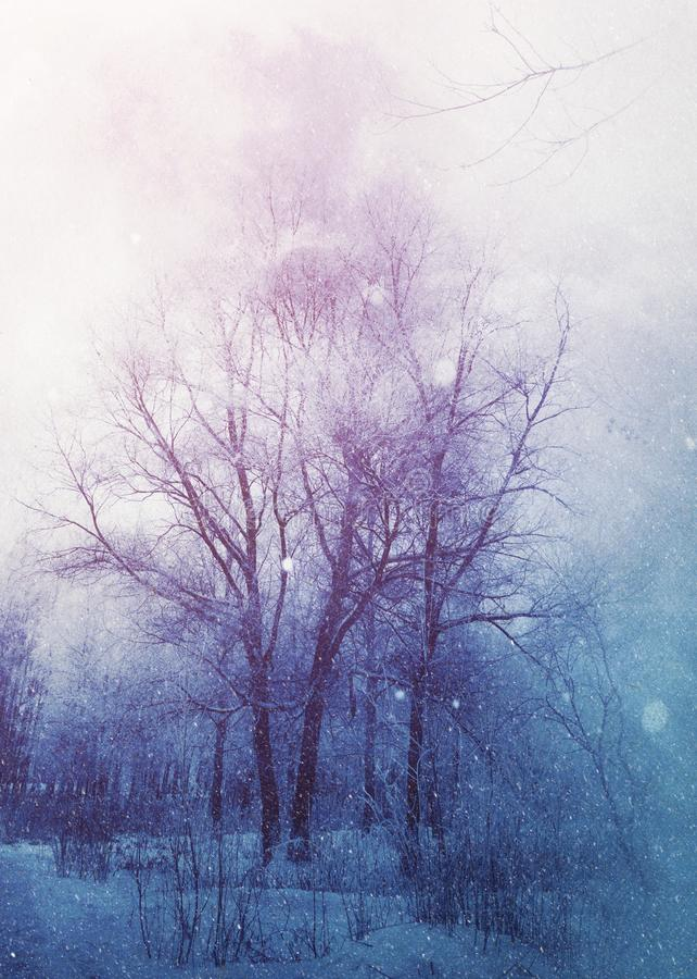 Los ?rboles bajo nevadas dise?an ilustración del vector