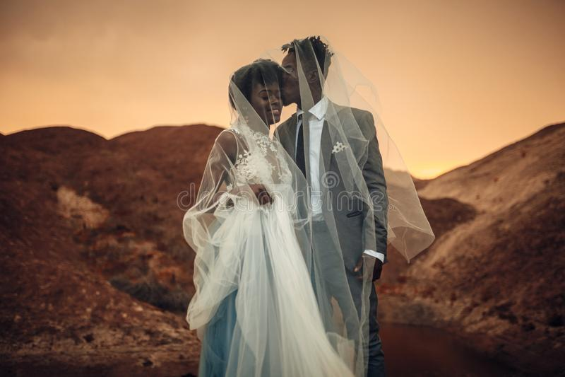 Los recienes casados se colocan debajo de velo nupcial, sonríen y se besan en barranco en la puesta del sol imagenes de archivo