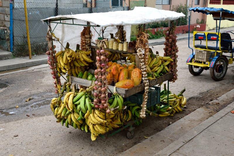 Los regalos naturales de Cuba imágenes de archivo libres de regalías