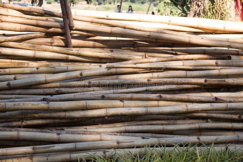 Los registros de bambú se cortan y alistan en venta en el mercado rural, Tailandia fotos de archivo