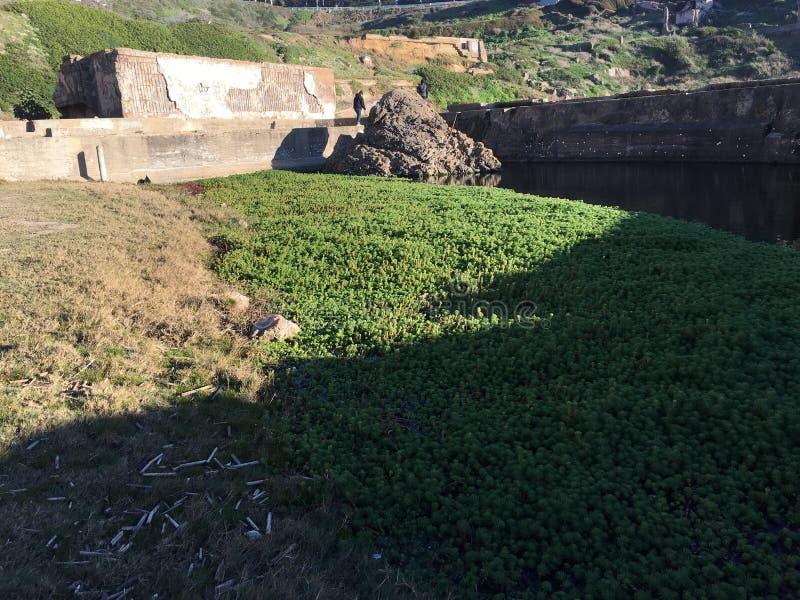 Los restos de los baños de Sutro, San Francisco, 7 fotografía de archivo