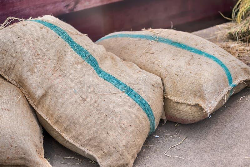 Los sacos del cáñamo que contienen el arroz imagen de archivo libre de regalías