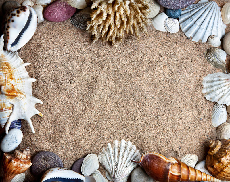 Los Seashells enmarcan en la playa imagen de archivo libre de regalías