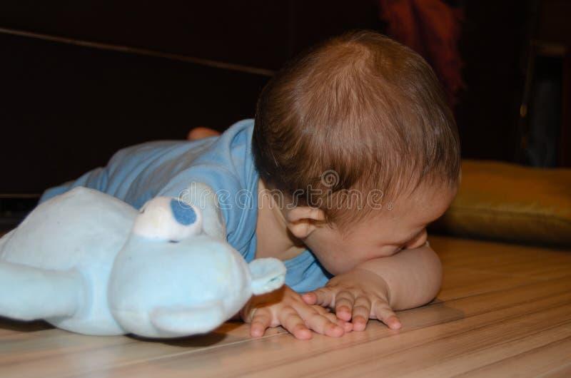 Los seis meses lindos del beb? que juega con el peluche azul refieren el piso, echar los dientes y el concepto temprano del desar imagenes de archivo