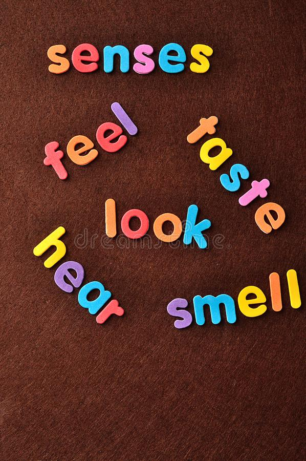 Los sentidos de palabras, sensación, gusto, mirada, oyen y huelen fotografía de archivo libre de regalías