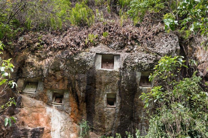 Los sepulcros tradicionales de la cueva tallaron en la roca en Lemo Tana Toraja, Sulawesi del sur, Indonesia fotografía de archivo libre de regalías