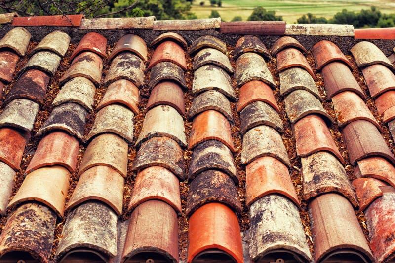 Los títulos del tejado tienen muchas hojas fotos de archivo libres de regalías