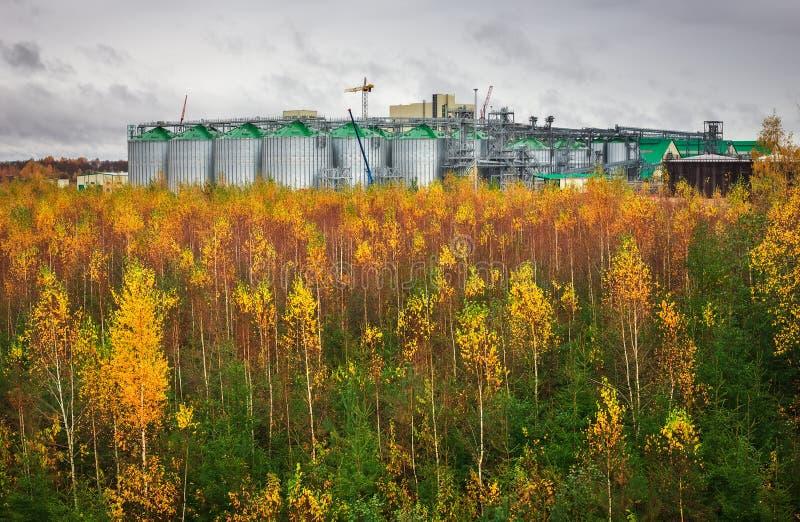 Los tanques de almacenamiento de gasolina y el tanque de aceite naturales en planta industrial fotografía de archivo