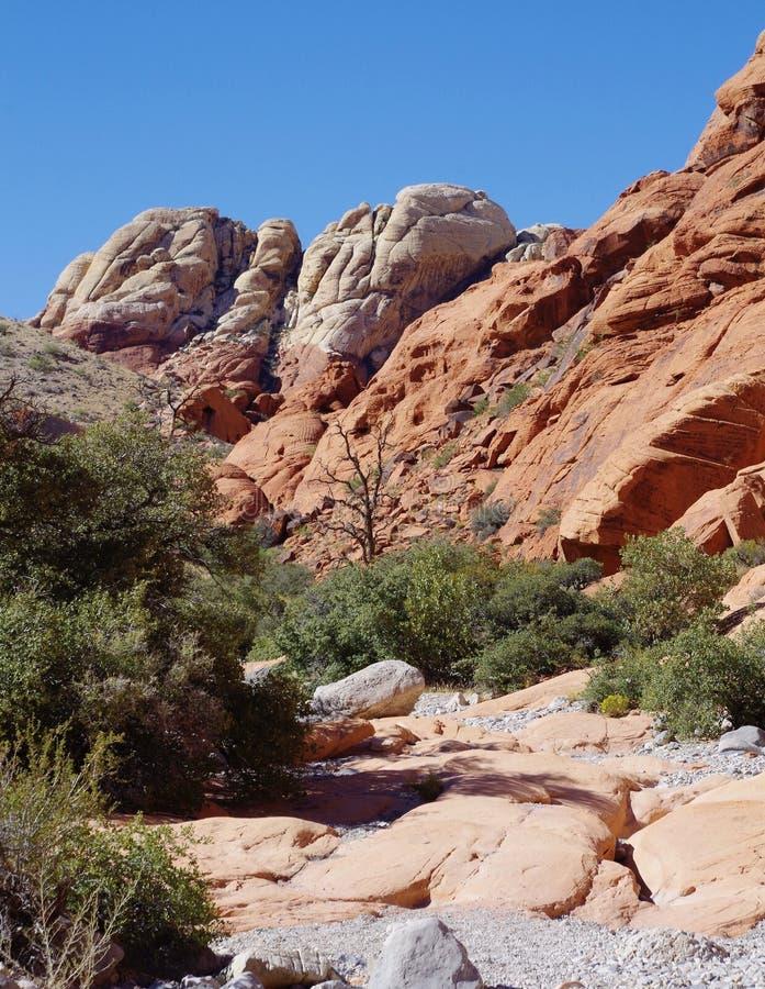 Los tanques del calicó, área roja de la protección de la roca, Nevada meridional, los E.E.U.U. foto de archivo libre de regalías