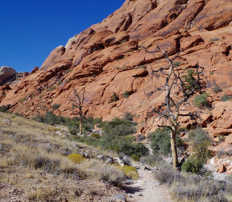 Los tanques del calicó, área roja de la protección de la roca, Nevada meridional, los E.E.U.U. fotografía de archivo libre de regalías