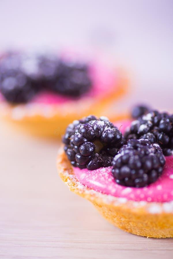 Los tartlets del primer llenados de la baya rosada baten y adornaron con las zarzamoras y el azúcar en polvo foto de archivo