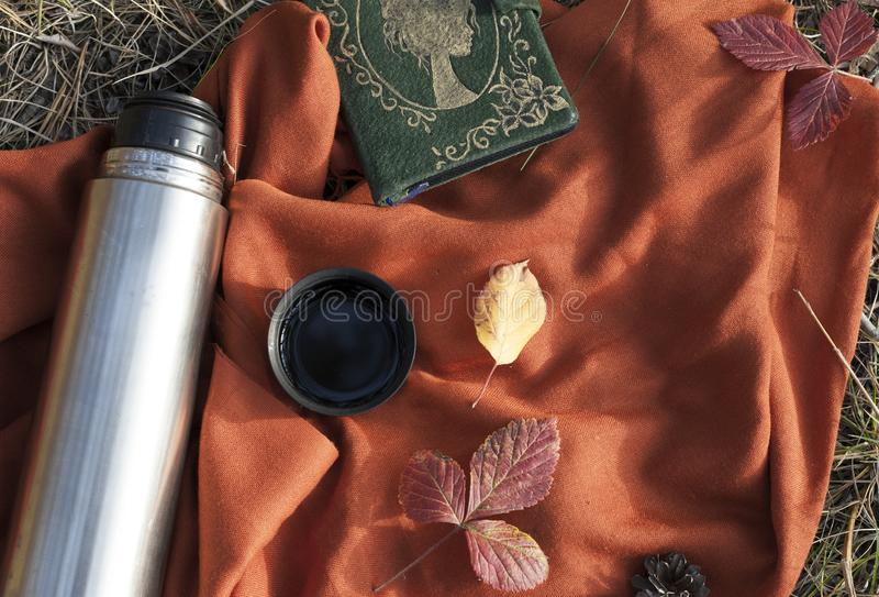 Los termos con té caliente en el concepto del bosque meriendan en el campo en el parque fotografía de archivo