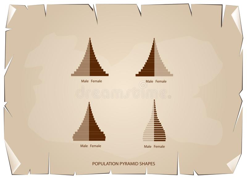 Los 4 tipos de gráficos de las pirámides de población ilustración del vector