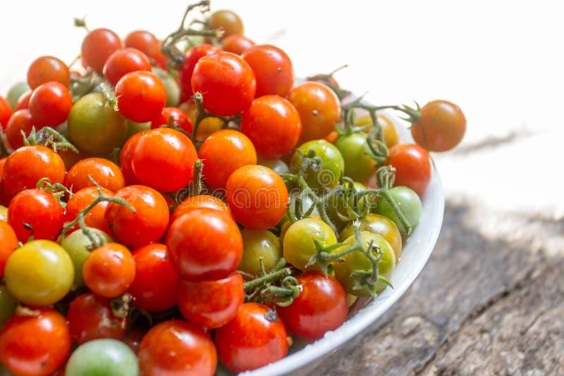 Los tomates de cereza frescos pueden comerlo o llevarlo el cocinero fotos de archivo