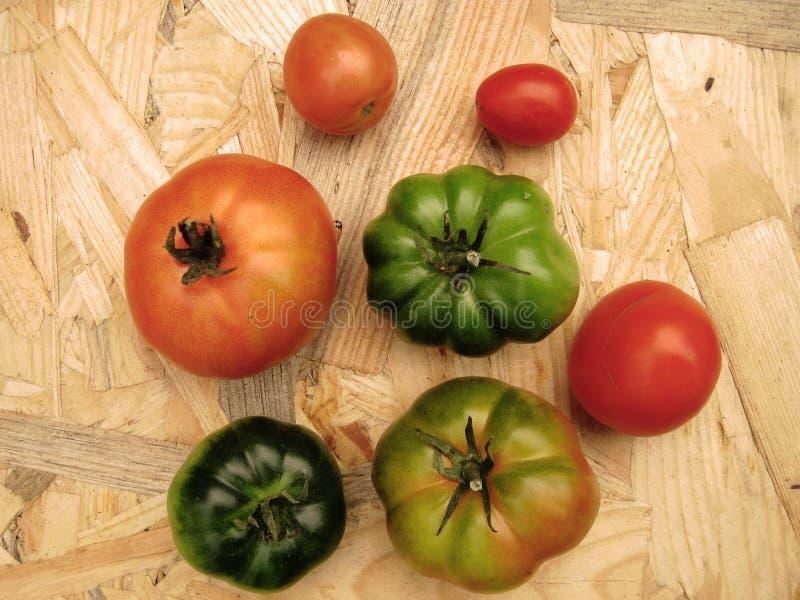 Los tomates en una tabla en cambio colorean rojo y verde fotos de archivo libres de regalías