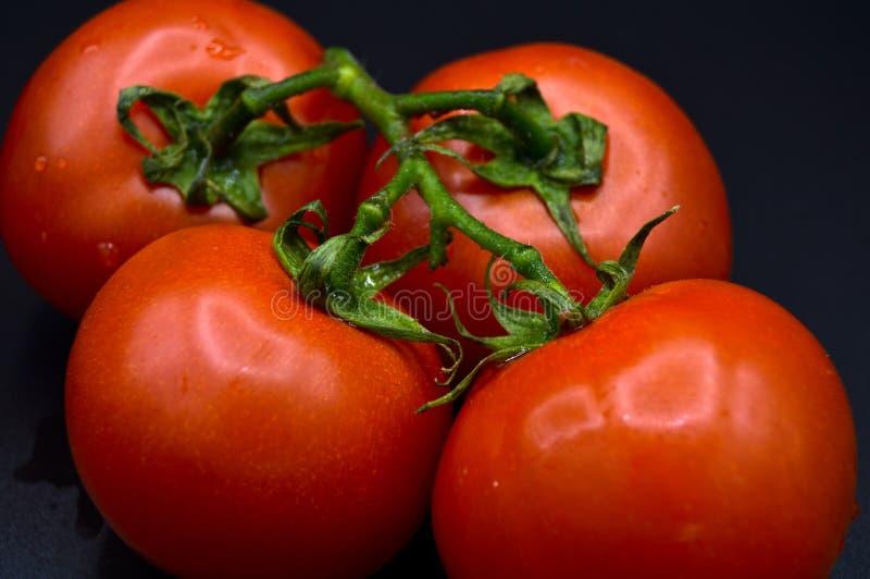 Los tomates rojos org?nicos frescos l?an imagenes de archivo
