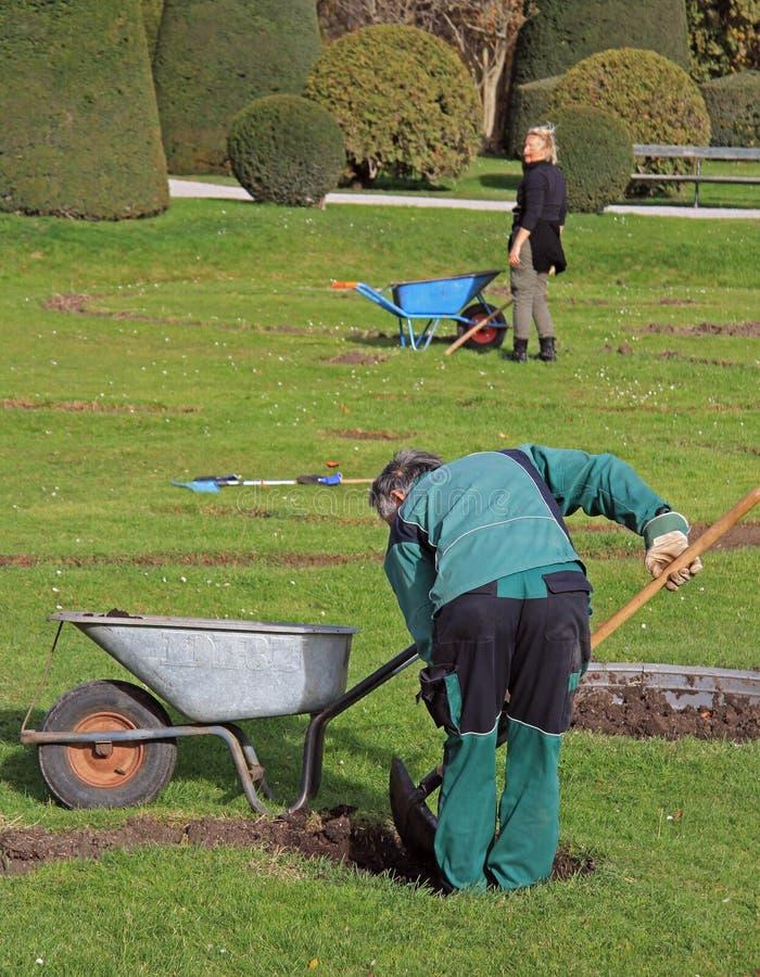 Los trabajadores del jardín están cavando en el parque de Viena, Austria fotografía de archivo
