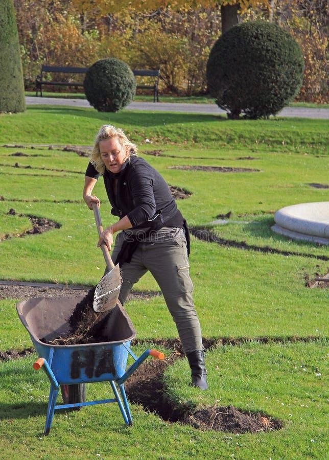 Los trabajadores del jardín están cavando en el parque de Viena, Austria fotos de archivo