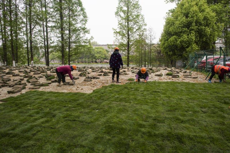 Los trabajadores del jardín plantaron la hierba en el río del qinhuai imagenes de archivo