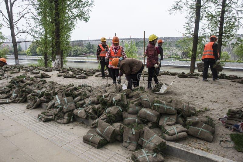 Los trabajadores del jardín plantaron la hierba en el río del qinhuai foto de archivo