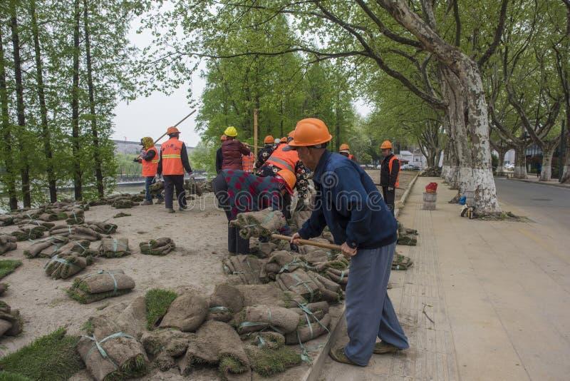 Los trabajadores del jardín plantaron la hierba en el río del qinhuai fotografía de archivo