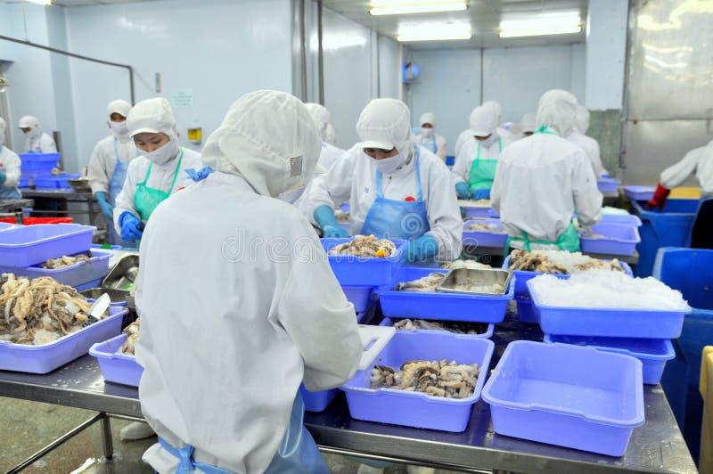 Los trabajadores están trabajando difícilmente en una fábrica de los mariscos en la ciudad de Ho Chi Minh, Vietnam imagen de archivo