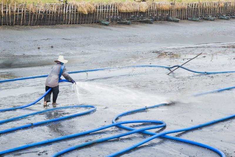 Los trabajadores utilizan la charca de alta presión del camarón de la limpieza del agua fotografía de archivo libre de regalías