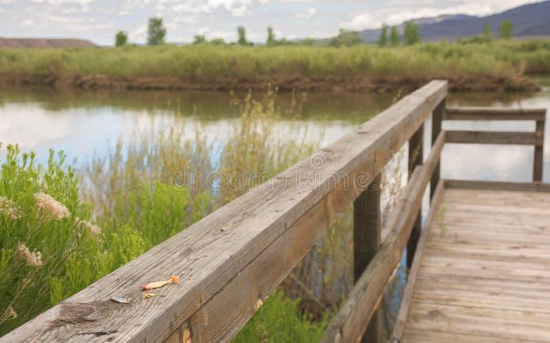 Los trastos dejados en la pesca del muelle a lo largo de la impulsión de la fauna en marrones parquean a principios de verano imagenes de archivo