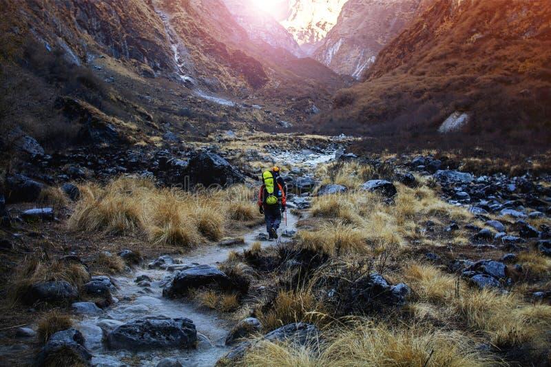 Los Trekkers llevan la mochila que caminan en rastro en valle imágenes de archivo libres de regalías