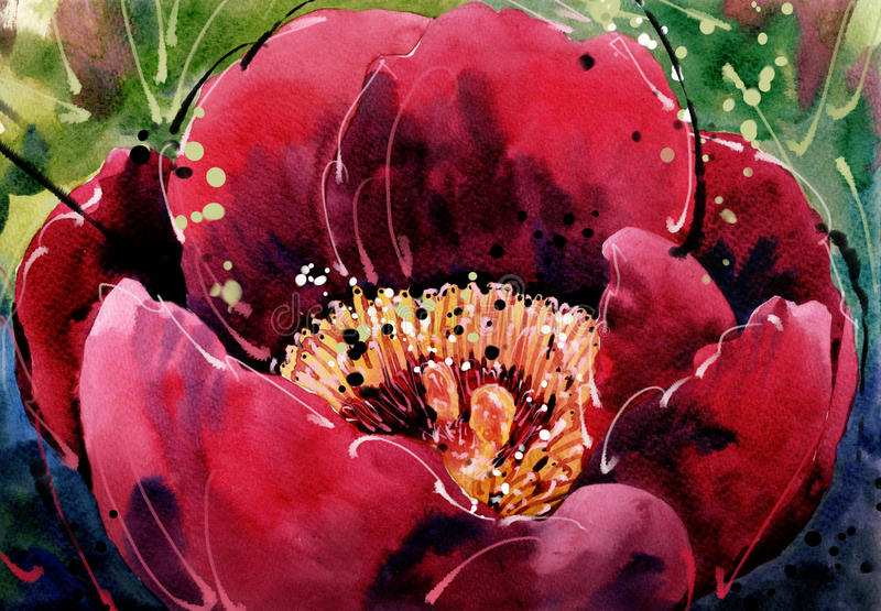 Los tulipanes de la pintura de la acuarela escogen la flor roja libre illustration