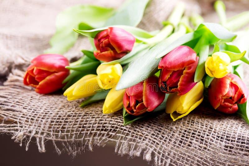 Los tulipanes rojos y amarillos en fondo de madera miman fondo del día al ` s del día o de las mujeres del ` s fotografía de archivo libre de regalías