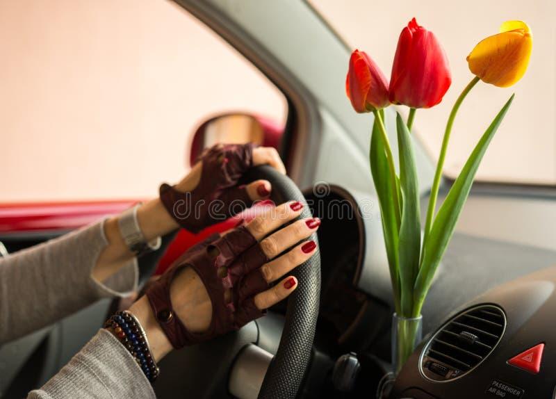 Los tulipanes rojos y amarillos traen a mujeres de la alegría al conducir imagenes de archivo