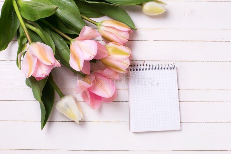 Los tulipanes rosados y vacian el cuaderno abierto en vagos de madera pintados blanco fotos de archivo libres de regalías