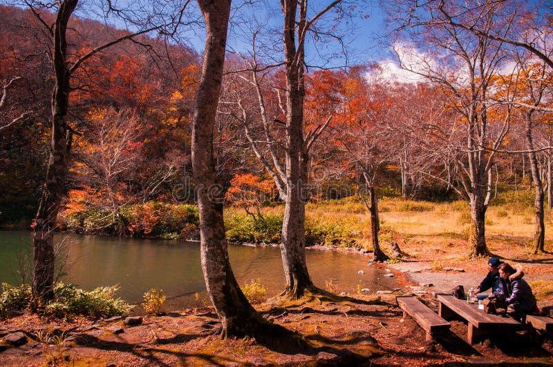 Los turistas gozan de Autumn Forest en la charca de Dokko foto de archivo libre de regalías