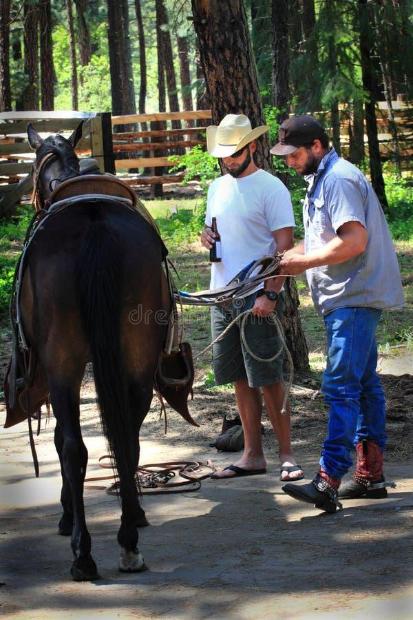 Los vaqueros relajados ensillan un caballo foto de archivo libre de regalías