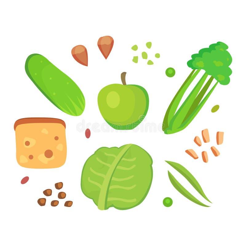Los veggies orgánicos aislados celulosa del ingrediente de la comida de la dieta del verde vegetal sano de la comida agrupan el s ilustración del vector