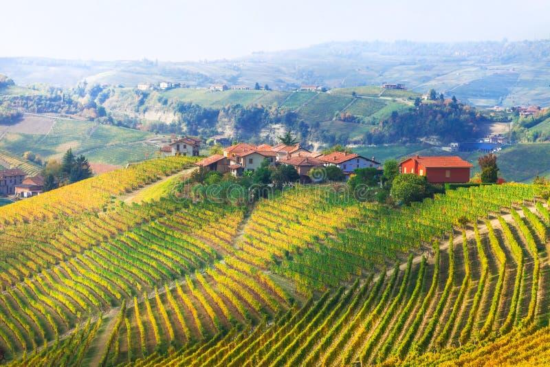 Los viñedos ajardinan - pequeños pueblos ilustrados de Piemonte, AIE fotos de archivo