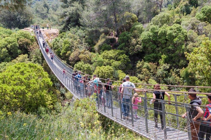 Los visitantes del parque nacional cruzan puente colgante sobre el río fotografía de archivo libre de regalías