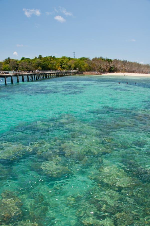 La gran barrera de coral imagen de archivo libre de regalías