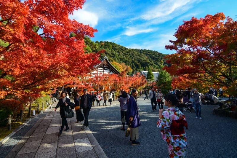 Los visitantes y los turistas extranjeros disfrutan de los colores vibrantes de la caída en Eikan-hacen templo de Zenrin-ji en Ky foto de archivo