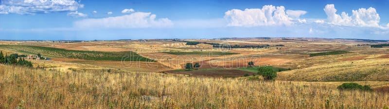 Los wheatfields de oro y las tierras de labrantío estériles ajardinan en Italia meridional imagen de archivo libre de regalías