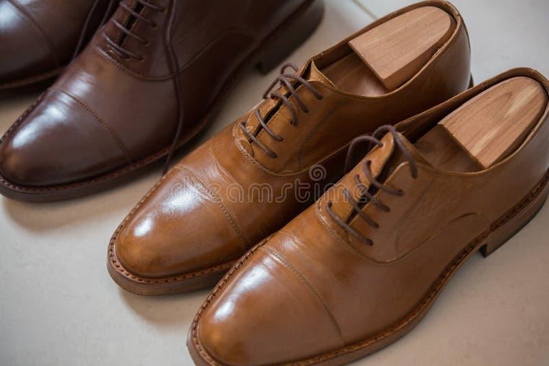 Los zapatos de los hombres de Brown y stratchers del zapato foto de archivo