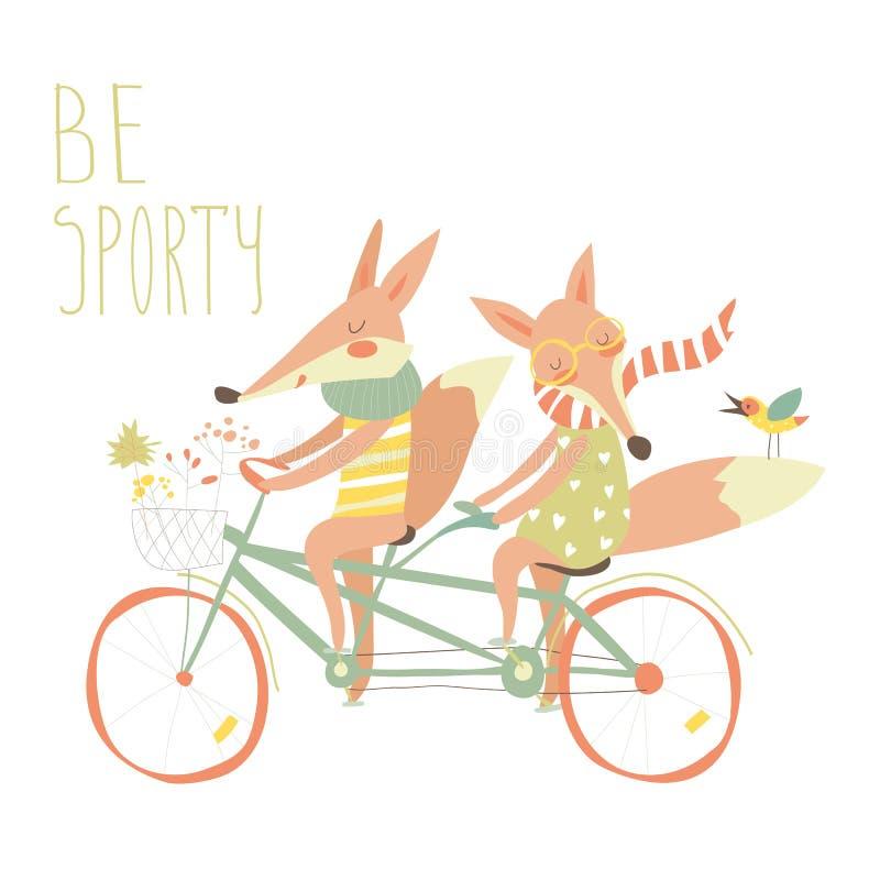 Los zorros lindos de los pares montan la bicicleta en tándem ilustración del vector