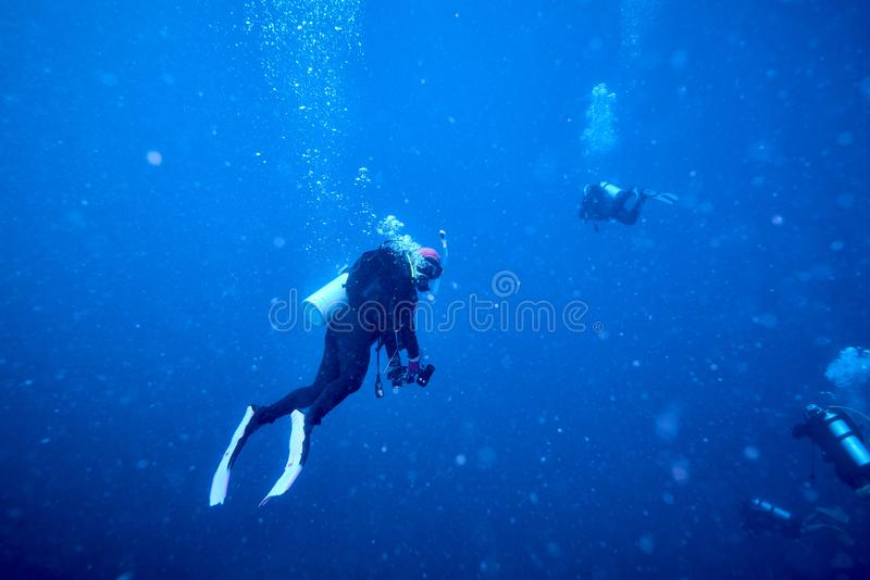 Losin south of Thailand 2018. Beautiful diving underwater with Fishes and Corals at Losin south of Thailand 2018 royalty free stock photos