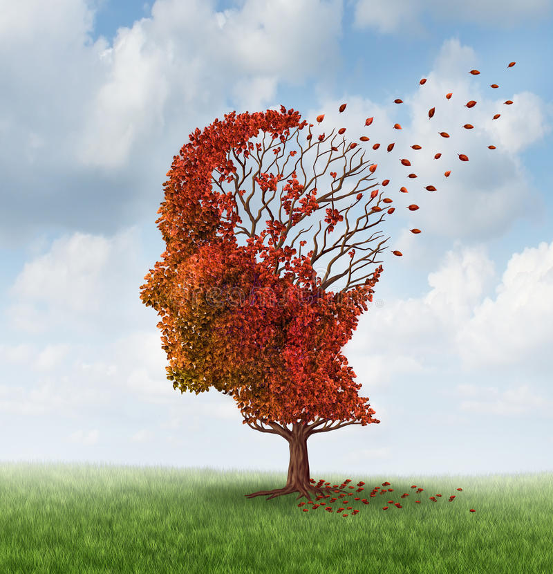 Losing Brain Function. Brain disease with memory loss due to Dementia and Alzheimer illness with the medical icon of an autumn season color tree in the shape of