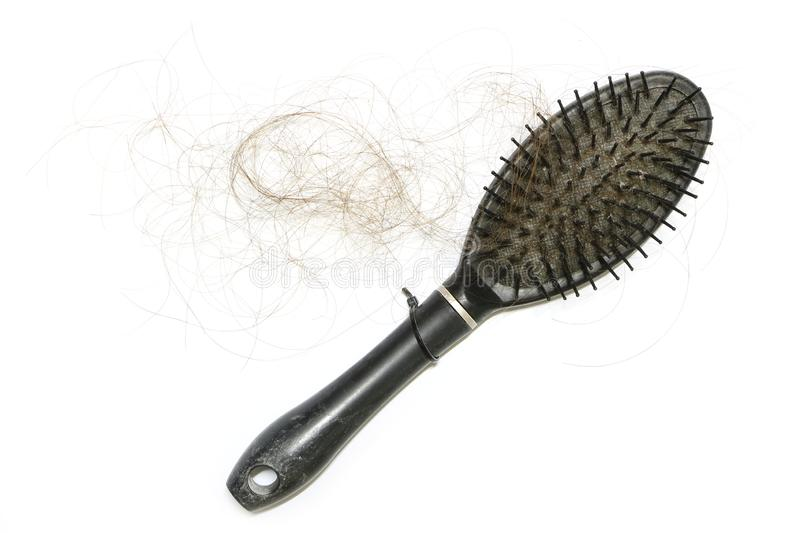 Loss long hair by falling and stick comb when woman use on white background have copy space. That is a problem can make glabrous. royalty free stock photography