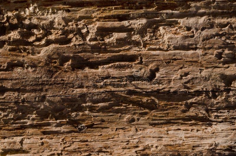 Lossa textur av ruttet trä royaltyfria foton