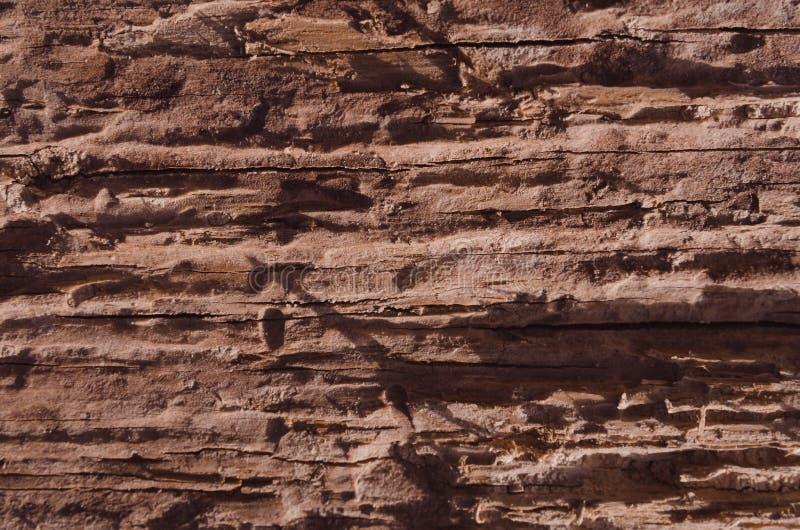 Lossa textur av ruttet trä royaltyfria bilder