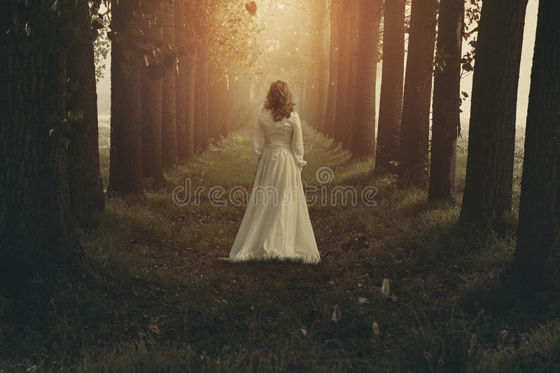 Lost in a dreamy land. Woman with victorian dress in fairy and dreamy realm. Fantasy manipulation stock image